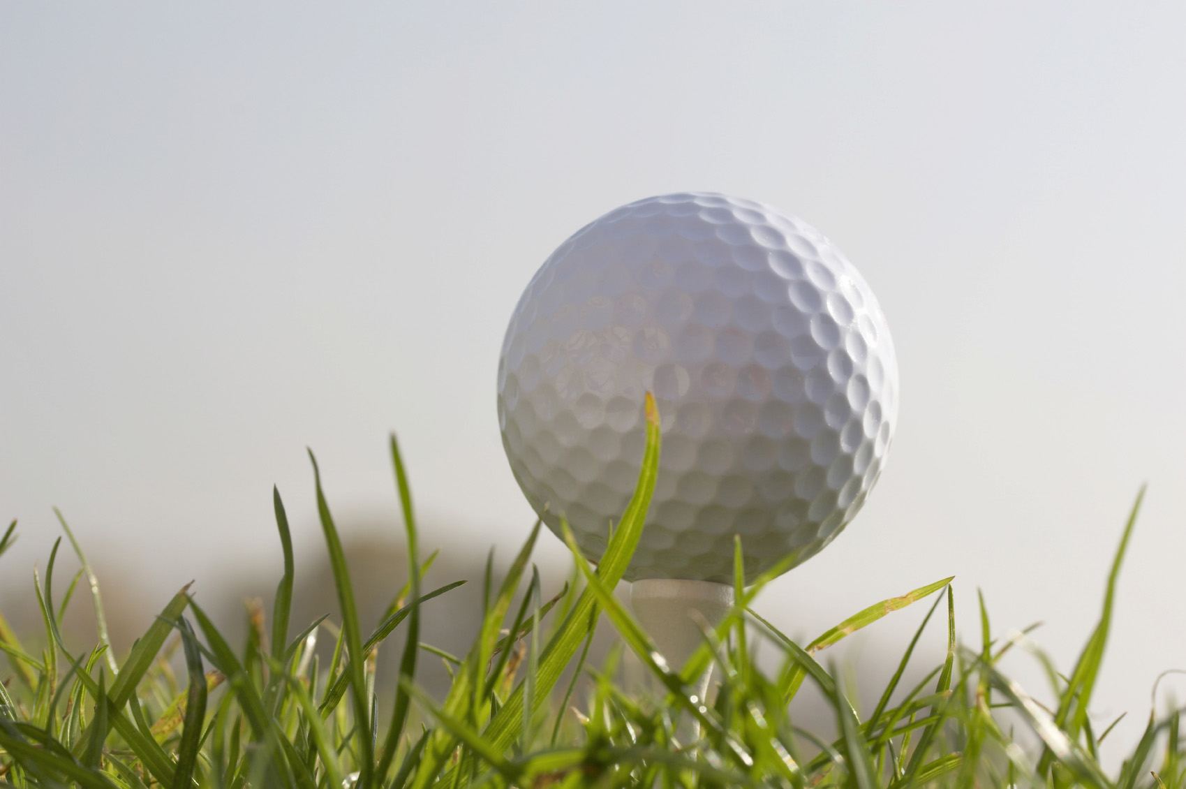 Golf ball on tee on grass